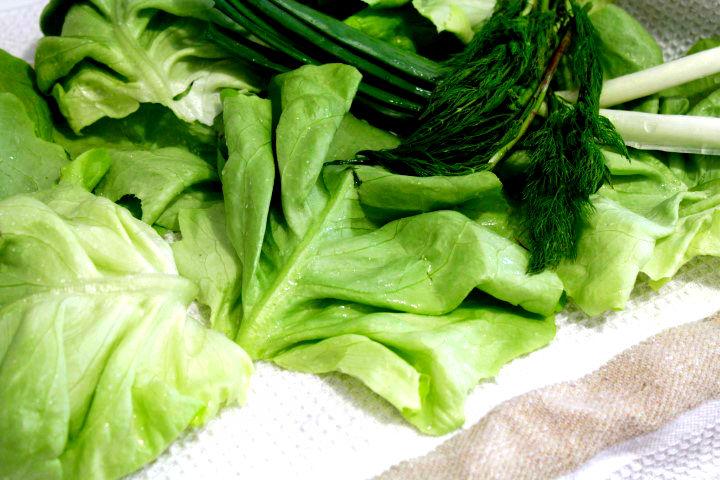 salata verde spalata